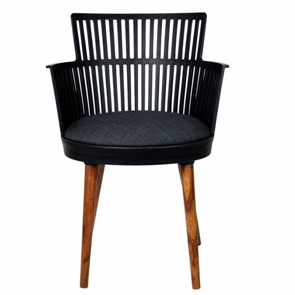 Jaxon Interior Fancy Chair