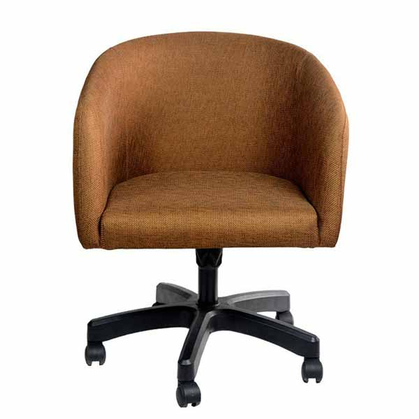 Austin Fancy Computer Chair